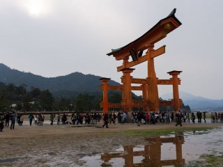 The Floating tori gates stand for a few hours on dry land when the tide is out