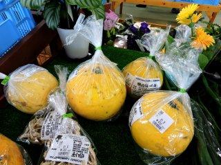 Gigantic grapefruit-like citrus
