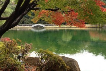 Tokugawa Gardens