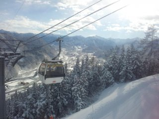 There is a 2.5km run from top to bottom running underneath the gondola. A great way to get to the bottom at the end of the day if your legs can handle it.