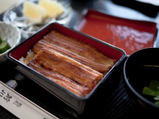 Maekawa Unagi Restaurant, Asakusa