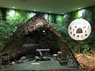 Une salle est dédiée à la réalisation des documentaires en pleine nature, la caméra est bien camouflée !