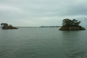 Pine covered islands in Matsushima Bay taken from a cruise boat under overcast skies