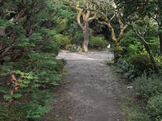 One of the paths in the extensive grounds
