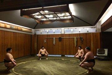 Sumo-Wrestling Training Session