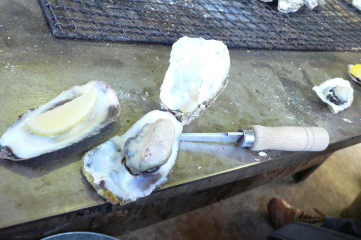 Kakiyaki Kamakura: Grilled Oysters