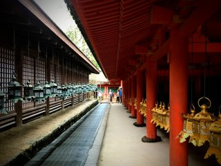 Some 3,000 gold and bronze lanterns have been donated to the shrine