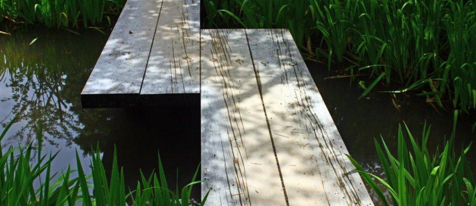 Kenroku-en: la beauté des détails