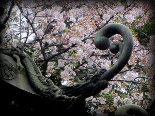 A decorative lantern