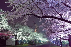 Osaka Expo Commemoration Park