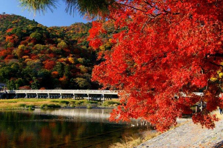 Kyoto's Arashiyama