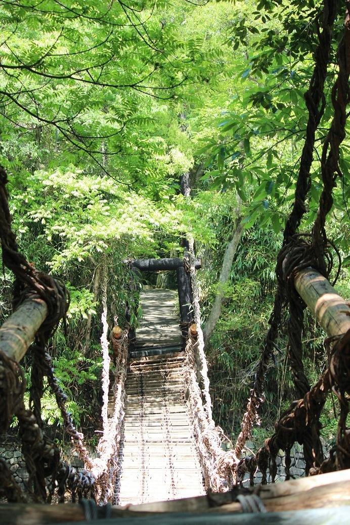 Ponte feita de cordas na Aldeia Shikoku