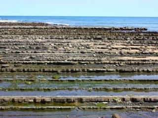 La formation de la roche basaltique qui entoure Aoshima est connue sous le nom de Oni no Sentakuita, ou Planche à laver du diable. C'est un spectacle si fascinant qu'on peut avoir du mal à croire que le paysage soit naturel