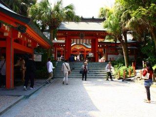 Aoshima Jinja est un sanctuaire qui porterait bonheur aux couples. Il est situé au centre de l'île, au milieu d'une épaisse jungle subtropicale