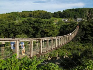The suspension bridge which will give you a wonderful view of the falls from afar