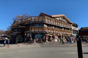 Mount Fuji and Hakone Day Tour