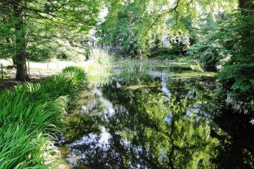 Sapporo Botanical Garden