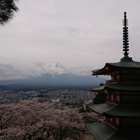 Road Trippin' Japan (Part Three)