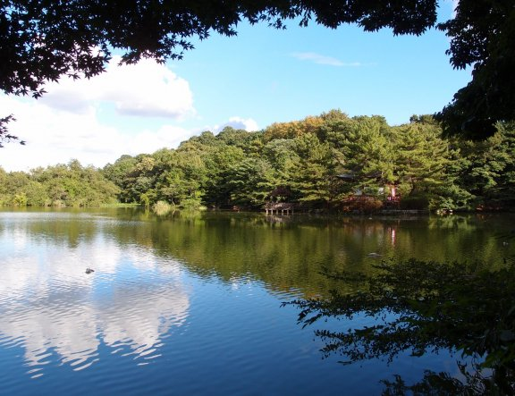 The Sounds of Sanpoji Pond