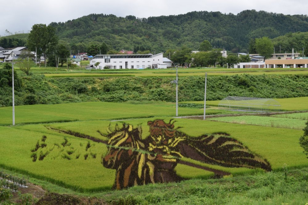 Incredible rice field art we saw along the way