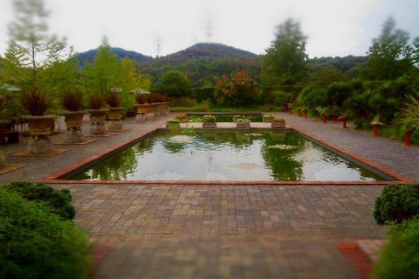 Miyama english garden okayama japan travel tourism for English garden pool