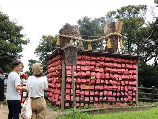 Ema at Enoshima shrine