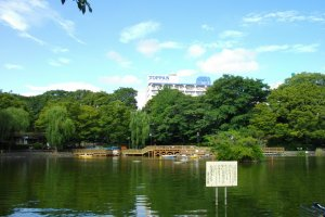 Mitsugi Park and its large open pond