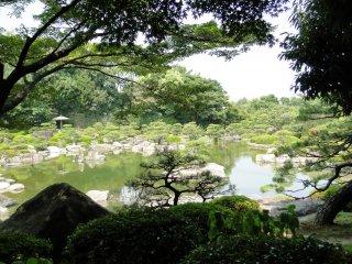 A view of the garden through the trees