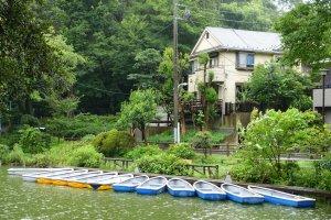 Boats waiting to be ridden at Zenpukiji Park