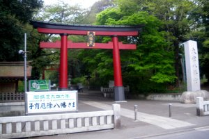 Omiya Hachimangu Shrine torii gate