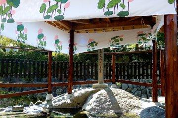 修善寺温泉の散歩道