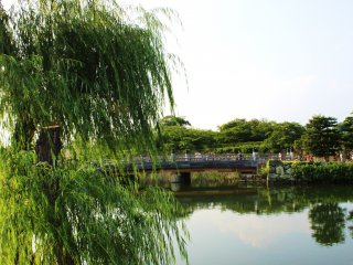 The moat is, by itself, enough of a sight to make a visit to Himeji city worthwhile