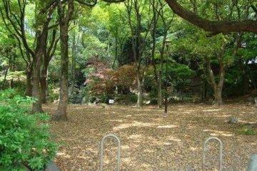 东京之公园巡礼 Part 3