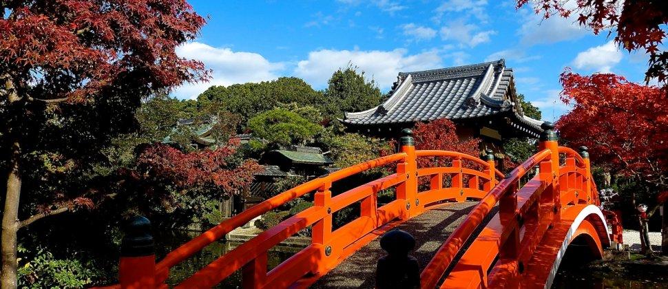 京都 神泉苑