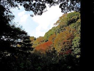 ทางเดินหินสู่วัดซุยเซน-จิ