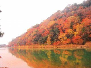 One of the best spots to see autumn foliage in Kyoto
