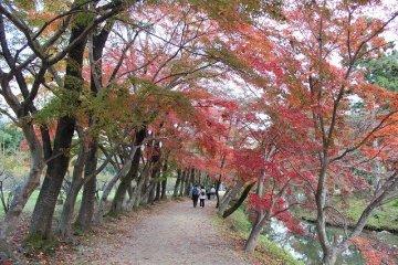 Daikakuji: a Historical Highlight