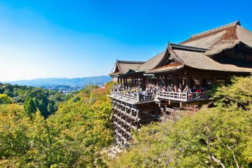 Customize and Embark on a Private Full Day Tour in Kansai