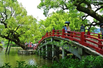 Fukuoka Shore Excursion
