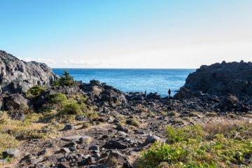 Jogasaki Scenic Coastal Trek, April 05 (Sunday)