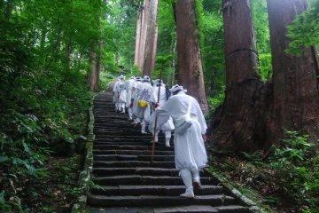Yamabushi Training on Mt. Haguro, Yamagata