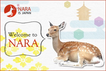 Welcome to Nara