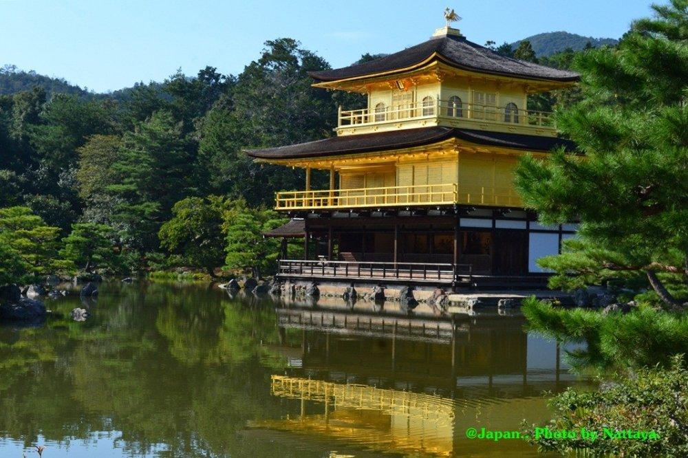 ความงดงามสีทองของตัวอาคาร