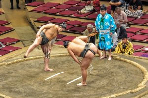 Some of the lower ranked Sumo