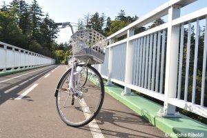 Thuê một chiếc xe đạp và đạp xe quanh những con đường dành cho xe đạp.