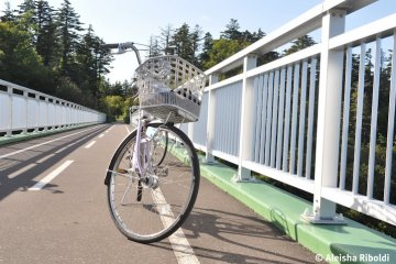 Rent a bike and cycle around the purpose-built bikepaths