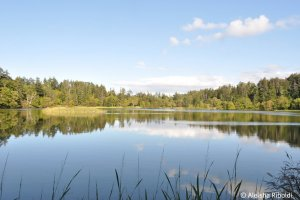 Himenuma (Princess Pond)