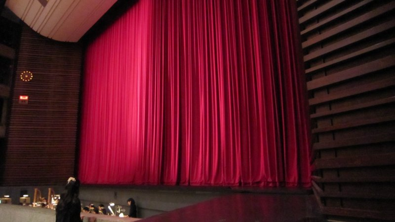 <p>The stage and the red curtain. The orchestra box is just in front of the stage</p>