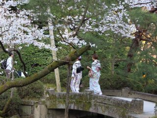 Women in kimono take a stroll through Heian Jingu's gardens