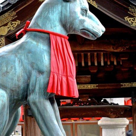 Spotting Foxes at Toyokawa Inari Temple